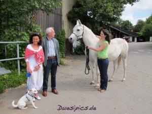 KB-Arabians-Familie
