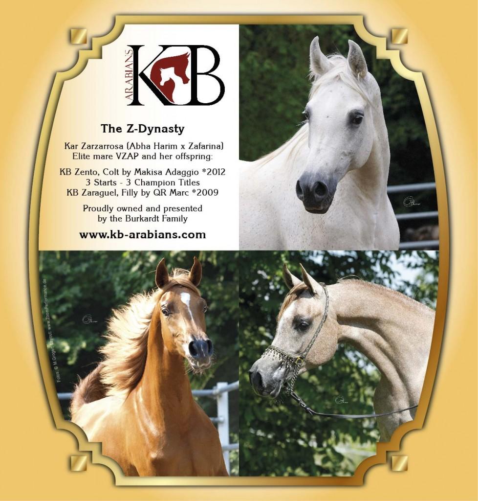 KB Arabians wishes a happy new year!